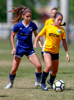 NPL 020418 vs. Pinecrest